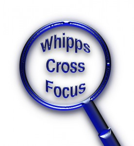 Monday's Whipps Cross Focus, local news, sports and features. Presented by Judy Hughes , Jason Kelvin, Jerry Dymond, Yvonne Hunter and Chris Scott